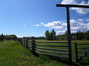 Ranch fencing provided by Graham Construction & Land Clearing.